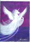 04 Pegasus Naturwesen-Essenz  --  100ml Spray