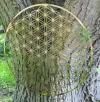 Blume des Lebens Wandschmuck - 25cm Edelstahl vergoldet - 5 dimensional