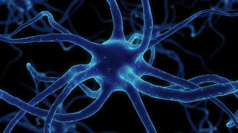 Gehirnaktivierung - Einzelsitzung