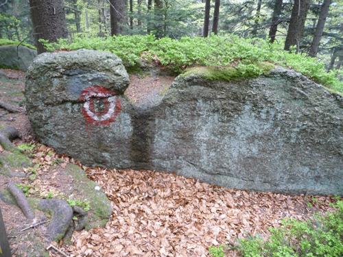 P1040738-Druidentreffpunkt-Opferstein1