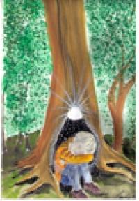 02 Tröstender Baumgeist - Naturwesen-Essenz  --  30ml Pipette