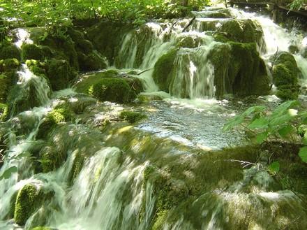 wasserbüro-trinkwasser-ist-unser-wertvollstes-lebensmittel-und-unsere-kernkompetenz